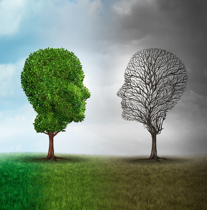 Human mood and emotion disorder concept as a tree shaped as two human faces with one half full of leaves and the opposite side empty branches as a medical metaphor for psychological contrast in feelings.