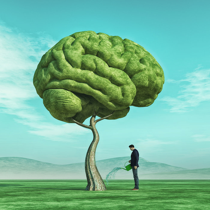 Conceptual image of a man squirting a big tree shaped human brain on a green field. This is a 3d render illustration.